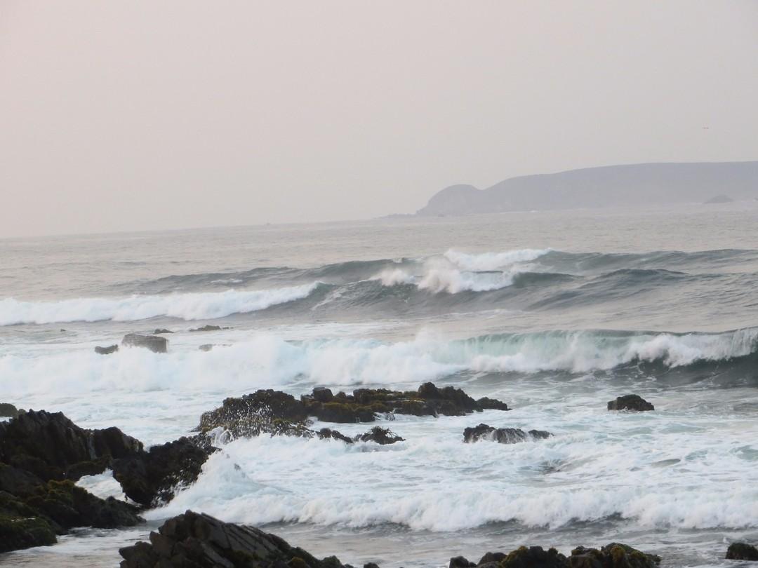 ruige kust