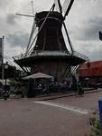 De Wijhese molen