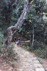 Klim naar de peace pagoda