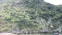 Dag 27 - Halong bay