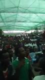 Midden in de menigten