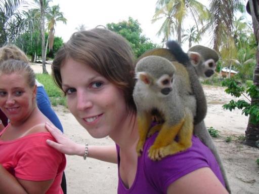 3 aapjes