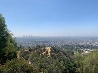 LA....zo groot