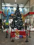 Kerstboom staat er al in Salta