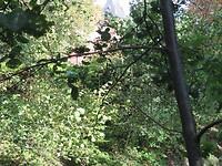 Zoek het slot Am Krickenbecker See.