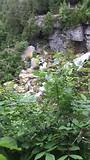 Inglish falls