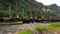 Kiwi rail (een hele lange...)