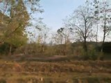 Malawi omgeving