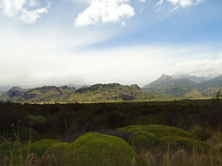 Patagonia NP (10)