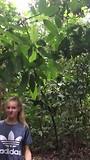 Jungle trekking, oerang oetans