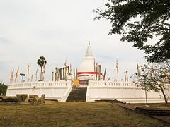 Sri Lanka dag 2c