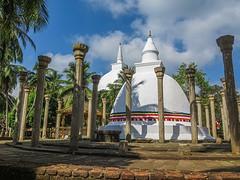 Sri Lanka dag 3d