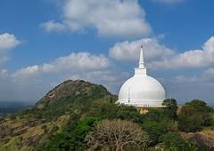 Sri Lanka dag 3e