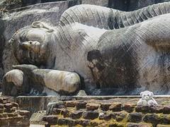 Sri Lanka dag 3f