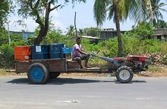 Sri Lanka dag 4i