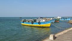Sri Lanka dag 5o