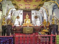 Sri Lanka dag 12k