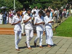 Sri Lanka dag 12q