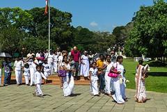 Sri Lanka dag 12r