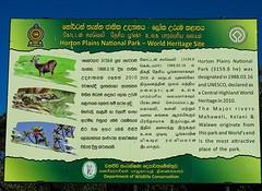 Sri Lanka dag 15a