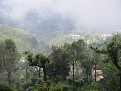 Sri Lanka dag 16i