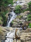 Sri Lanka dag 16k