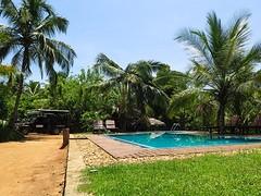 Sri Lanka dag 16ak