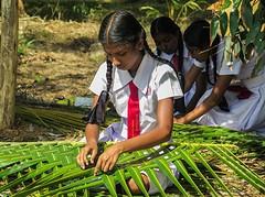 Sri Lanka dag 17e