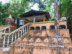 160407_Sri Lanka_004