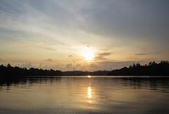 Sri Lanka dag 18h
