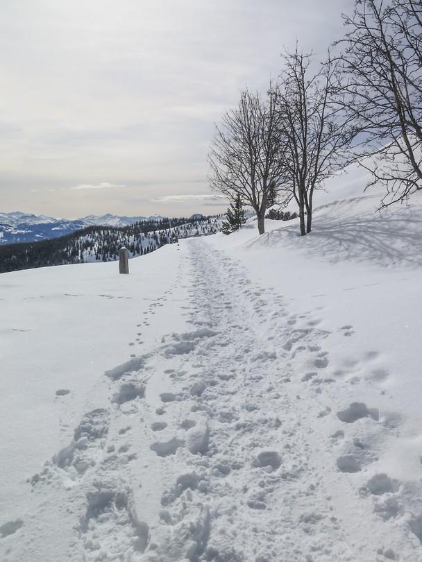 Oostenrijk dag 6f