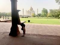 yoga tasj