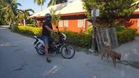 Nick op semi automatische motorbike