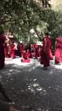Debaterende monniken