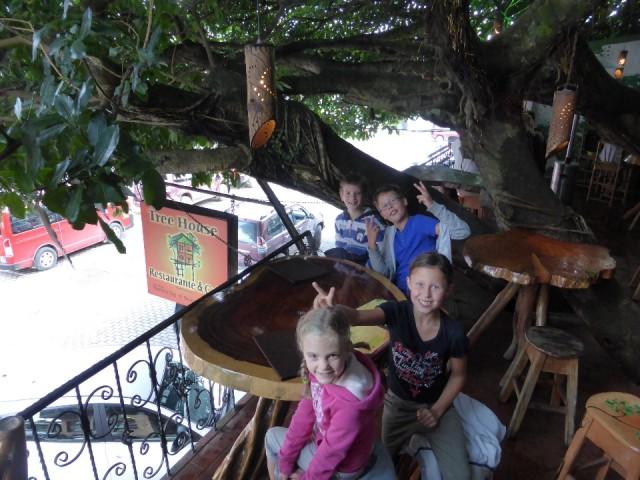 Tree House Costa Rica Beach