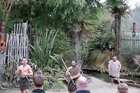 Hier zijn ze dan, krijgers van de Maori