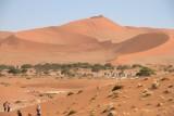 Rode zandduinen in de Sossusvlei