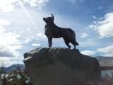 Het standbeeld van de Collie