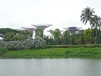 Gardens by the Bay, Singapore River Cruise