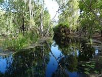 Bitter Springs, Mataranka