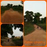 Bomi hills