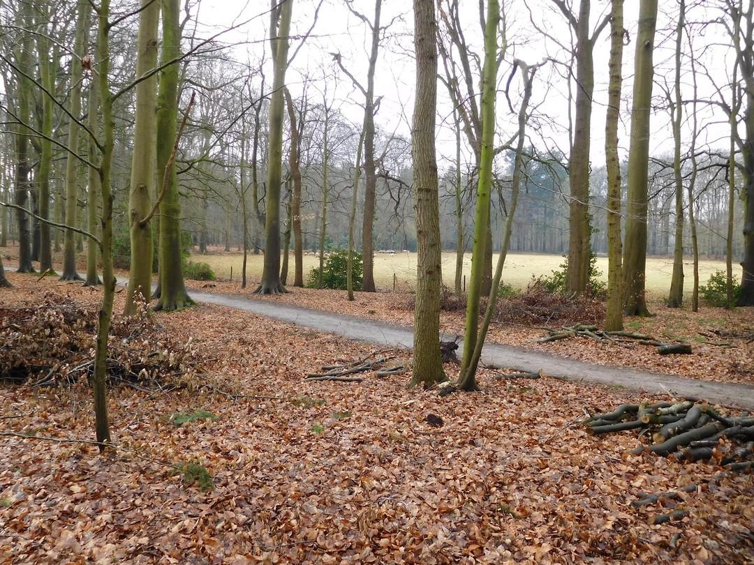 Landgoed Vosbergen