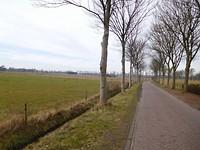 Borgstokken polder