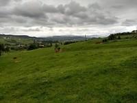 Het landschap voor Solvay