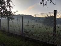 Kruisjes i.p.v. slotjes in het hek