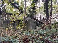Bunker in Staelduinse bos.