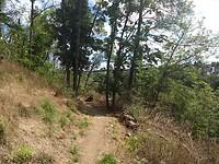 door het bos om de burcht heen