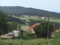Landelijk groen