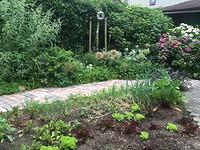 De tuin bij thuiskomst