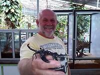 Vlinder & Reptielentuin - Tanah Rata Cameron Highland.
